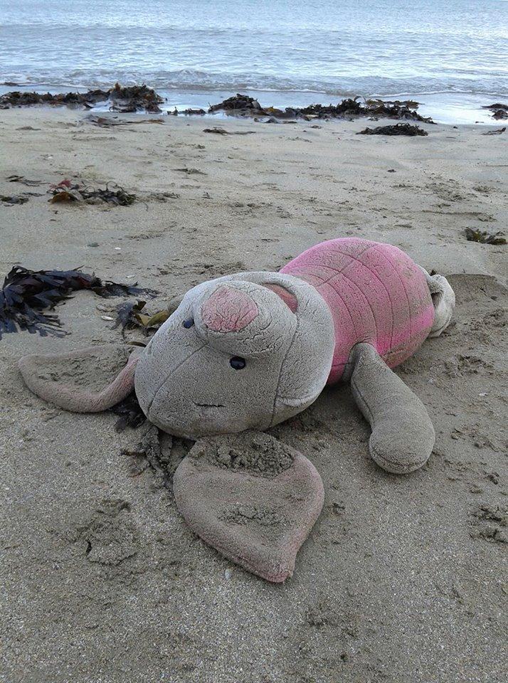 Death on a beach. Ballbriggan